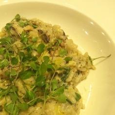 Wild Mushroom, Spinach and Artichoke, White Truffle-scented Risotto